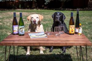 wine-wags